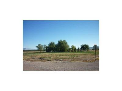 1350 GREEN MEADOWS RD, ANTHONY, NM 88021 - Photo 1