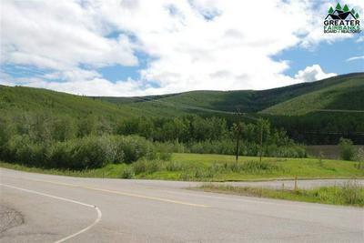 MILE 309 PARKS HIGHWAY, Nenana, AK 99760 - Photo 2