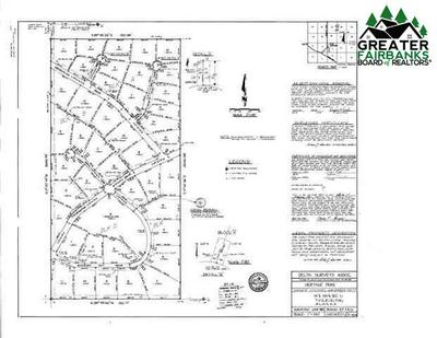 LOT 3 CLEARWATER DRIVE, DELTA JUNCTION, AK 99737 - Photo 1