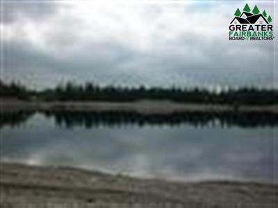 LOT 9 LADESSA ROAD, North Pole, AK 99712 - Photo 2