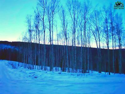 1529 TALL BIRCH LANE, Fairbanks, AK 99712 - Photo 1