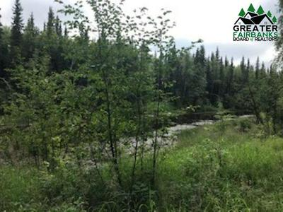 NARCISSUS WAY, North Pole, AK 99705 - Photo 2
