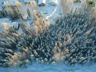 NHN KENAI WAY, North Pole, AK 99705 - Photo 1