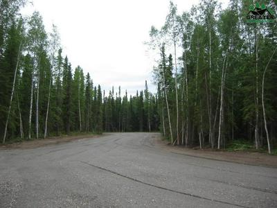 787 CLEAR WATER COURT, North Pole, AK 99705 - Photo 1