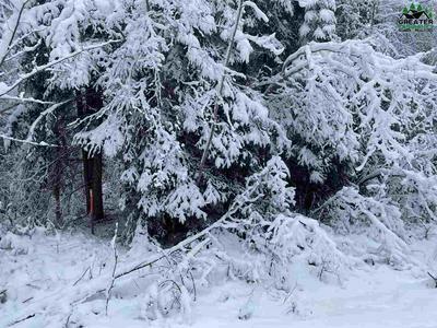 NHN LOT 11 LUCILLE AVENUE, North Pole, AK 99705 - Photo 2