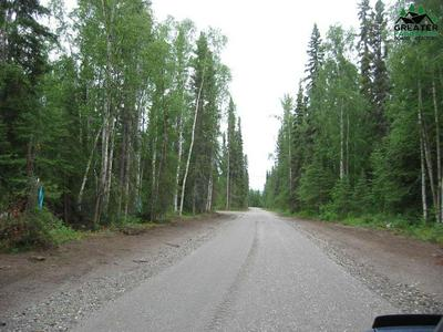 TRACT D S BLANKET BOULEVARD, North Pole, AK 99705 - Photo 1
