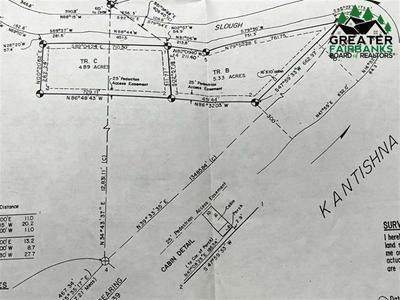 NHN KANTISHNA RIVER, Nenana, AK 99760 - Photo 2