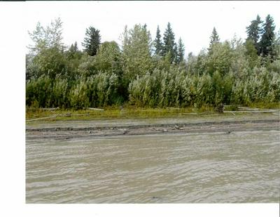NHN YUKON RIVER, Horner Hot Springs, AK 99756 - Photo 1