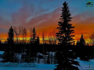 1300 RANGE VIEW RD, North Pole, AK 99705 - Photo 2