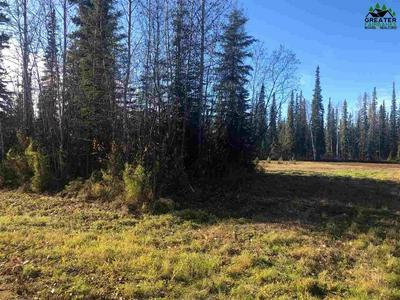 NHN DUNDEE LOOP, North Pole, AK 99705 - Photo 2