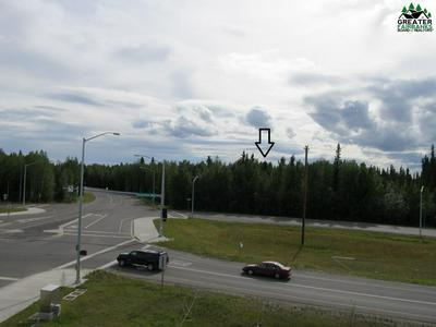 TRACT C SAINT NICHOLAS DRIVE, North Pole, AK 99705 - Photo 2