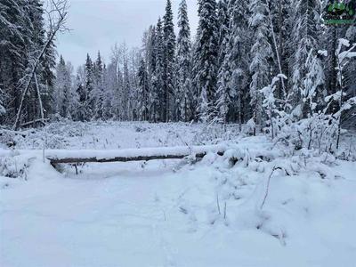 NHN LOT 4 LUCILLE AVENUE, North Pole, AK 99705 - Photo 1