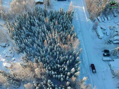 NHN KENAI WAY, North Pole, AK 99705 - Photo 2