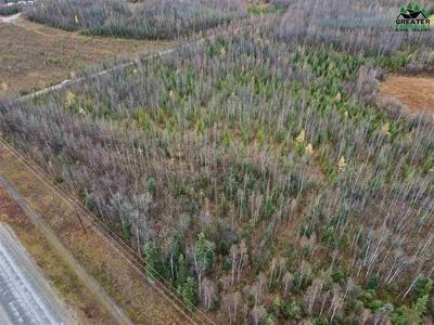 3180 E FOXY LANE, Delta Junction, AK 99737 - Photo 1