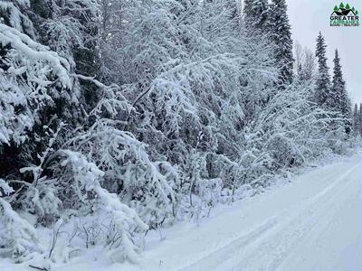 NHN LOT 10 LUCILLE AVENUE, North Pole, AK 99705 - Photo 1