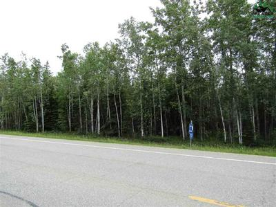 4 MILE CLEARWATER ROAD, Delta Junction, AK 99737 - Photo 2