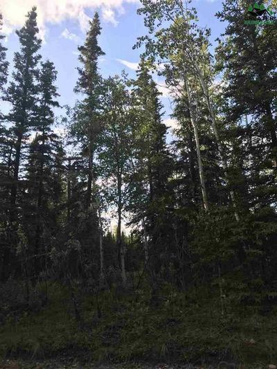L6 BC LENG ROAD, Delta Junction, AK 99737 - Photo 2