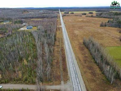 3180 E FOXY LANE, Delta Junction, AK 99737 - Photo 2