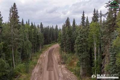 NHN MAUDE BOYLE DRIVE, North Pole, AK 99705 - Photo 2