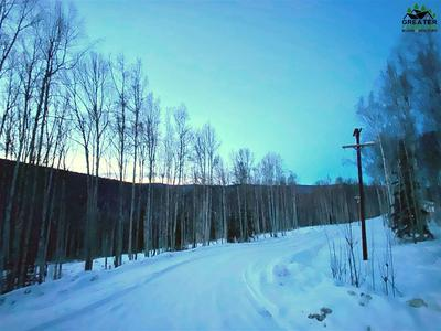 1529 TALL BIRCH LANE, Fairbanks, AK 99712 - Photo 2