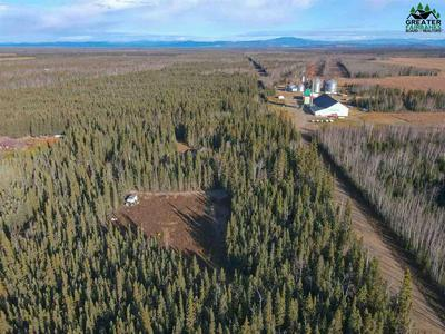 NHN CHASE ROAD, Delta Junction, AK 99737 - Photo 1