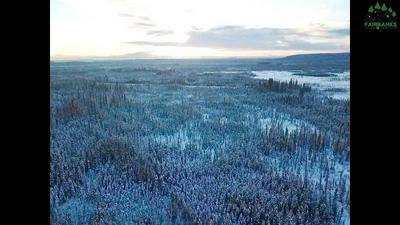 NHN WOODPECKER LANE, Fairbanks, AK 99712 - Photo 1