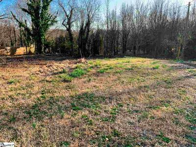 303 OLD PETRIE RD, Spartanburg, SC 29302 - Photo 2
