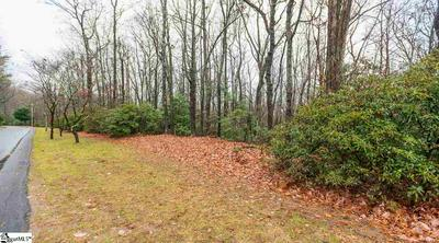 103 RHODODENDRON, Cleveland, SC 29635 - Photo 1