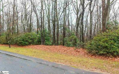103 RHODODENDRON, Cleveland, SC 29635 - Photo 2