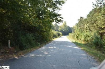 A400 BRAMLETT ROAD, LAURENS, SC 29360 - Photo 1
