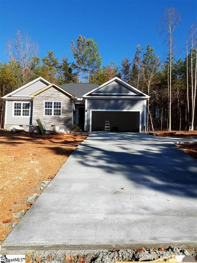 216 GINKO RDG, PICKENS, SC 29671 - Photo 1