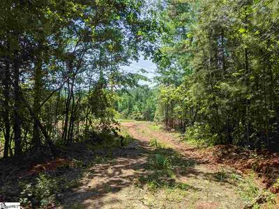 LOT 4 WATERFORD RT 130 HIGHWAY, Seneca, SC 29672 - Photo 1