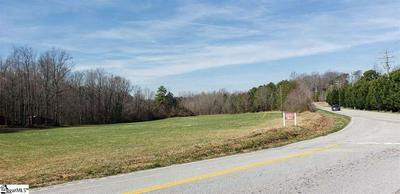 0 MOUNTAIN VIEW ROAD, TRAVELERS REST, SC 29690 - Photo 2