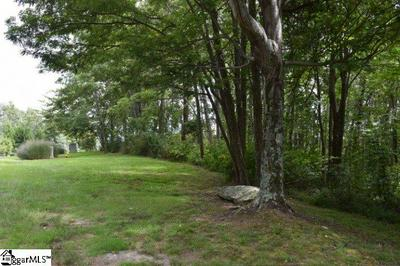 RAVEN ROAD, Landrum, SC 29653 - Photo 2