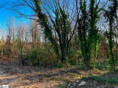 285 OLD PETRIE RD, Spartanburg, SC 29302 - Photo 1