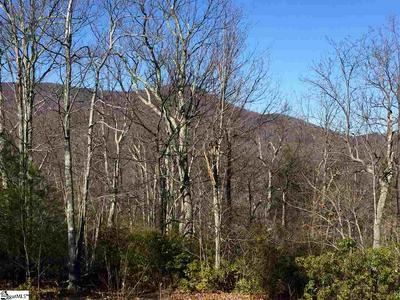 103 EAGLE ROCK RD, Landrum, SC 29356 - Photo 2