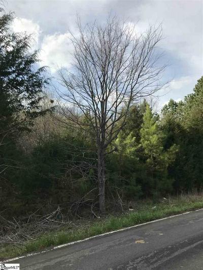 0 TEMPLETON ROAD, LAURENS, SC 29360 - Photo 1