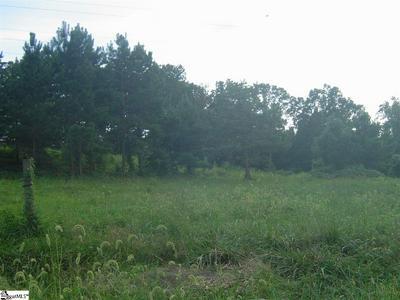 BROOKDALE ACRES DRIVE, Lyman, SC 29365 - Photo 1