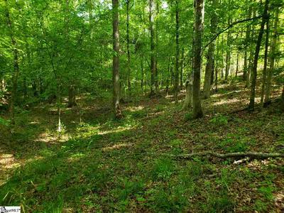 208 MIDDLETON PL, Hodges, SC 29653 - Photo 1
