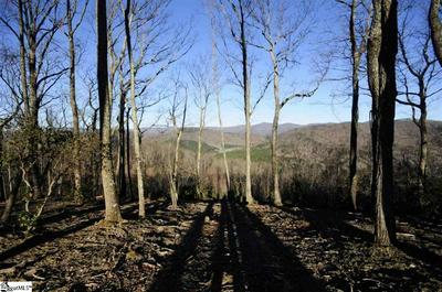 133 CROWNE HILL WAY, Marietta, SC 29661 - Photo 2
