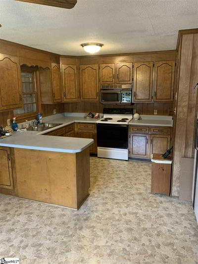 115 INDIAN BRANCH RD, Hodges, SC 29653 - Photo 2