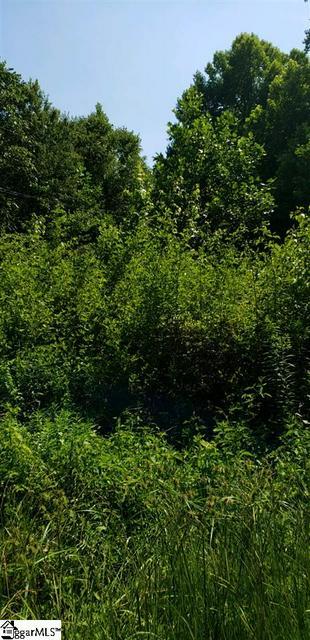 0 HOWE ROAD, Greer, SC 29651 - Photo 2