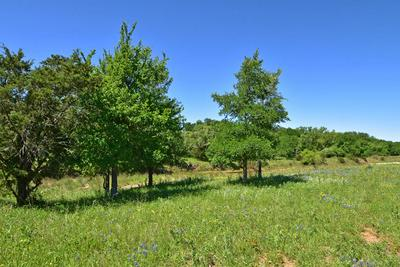 6 -- SLATE ROCK RD # 6, Willow City, TX 78675 - Photo 1