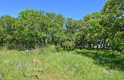 10 -- SLATE ROCK RD # 10, Willow City, TX 78675 - Photo 2