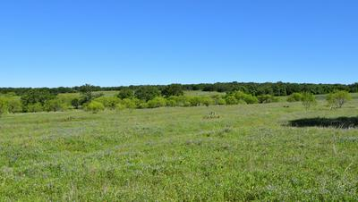 1 -- SLATE ROCK RD # 1, Willow City, TX 78675 - Photo 2