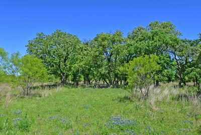 6 -- SLATE ROCK RD # 6, Willow City, TX 78675 - Photo 2