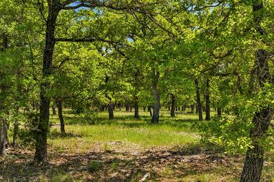 00 -- MYSTIC OAKS TRAIL # 11, Fredericksburg, TX 78624 - Photo 1
