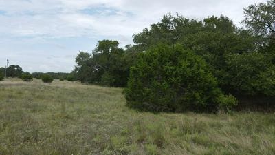 103 OWEN SHAW # 44, Blanco, TX 78606 - Photo 2