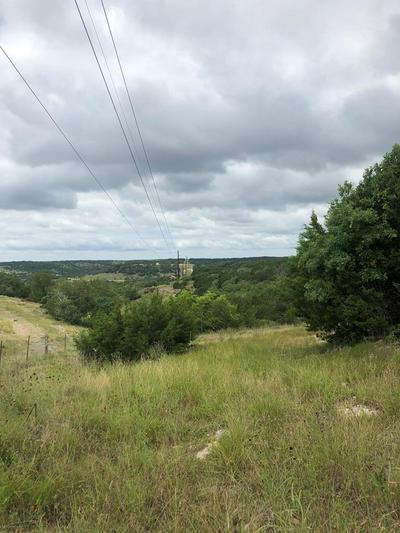 00 -- ALTWEIN RD # 02, Blanco, TX 78606 - Photo 1