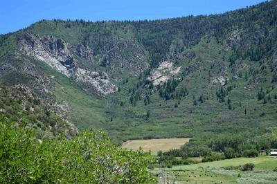 TBD HIGHWAY 141, Whitewater, CO 81527 - Photo 2
